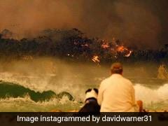 """David Warner Expresses """"Shock"""" At Sight Of Australia Bushfire, Posts Emotional Message On Instagram"""