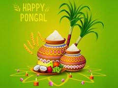 Happy Pongal 2020: आज से शुरू हो रहा है पोंगल, दोस्तों को इन संदेशों से करें Wish और खिलाएं ये स्पेशल डिश व प्रसाद