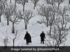Fresh Snow In Kashmir, Himachal; Rain Across North India