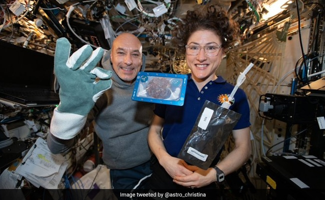 It Took Almost 3 Hours For Astronauts To Bake First Cookies In Space