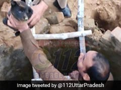 Uttar Pradesh Cop Rescues 3 Puppies From Snake-Infested Well