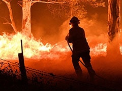 Australia On High Alert For New Bushfires As Heat And Winds Pick Up