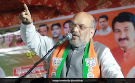 'Push Button With Such Anger That Shaheen Bagh Feels Current': Amit Shah