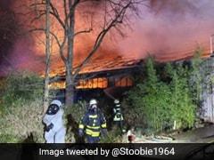 चिड़ियाघर में अचानक लगी भयानक आग, पहले जला बंदर का घर और फिर एक-एक कर 30 जानवरों की मौत
