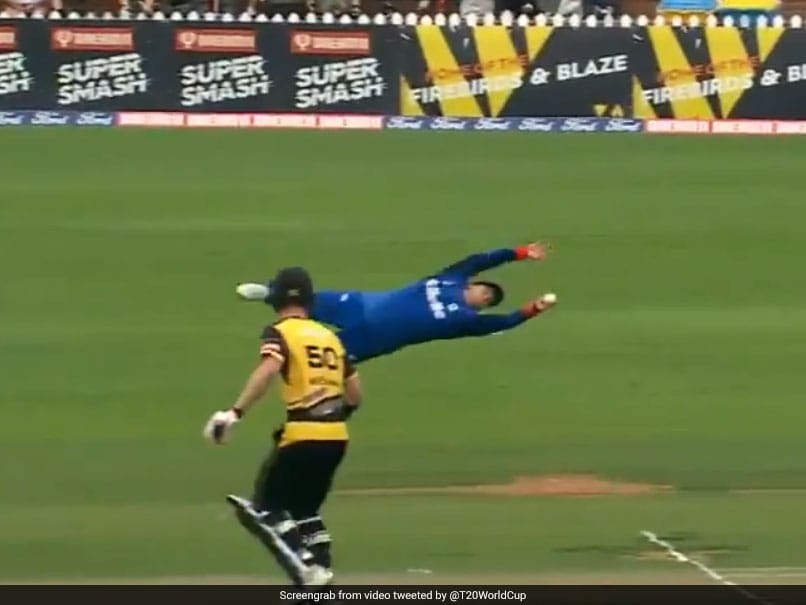 """Watch: New Zealand Cricketers One-Handed """"Flying"""" Catch Is The Stuff Of Dreams"""