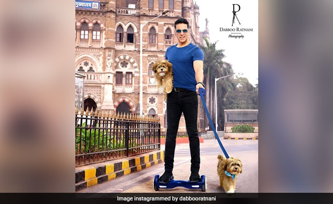 Dabboo Ratnani's 2020 Calendar: Akshay Kumar's Shot Is Absolutely Paw-Dorable