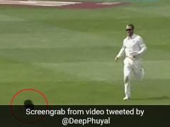 IND vs NZ: गेंद नहीं, टोपी पकड़ने के लिए कप्तान विलियमसन ने लगाई दौड़, आखिर में हुआ ऐसा... देखें Video