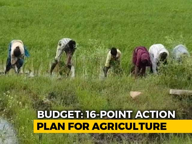 Video : Did Budget Meet Farmers' Expectations?