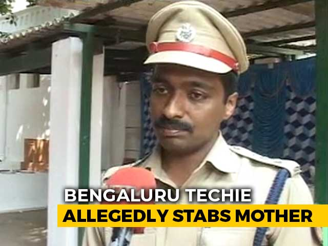 Video : Bengaluru Techie Kills Her Mother, Flies To Andaman For Holiday, Arrested