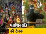 Video : महाशिवरात्रि में हर-हर महादेव