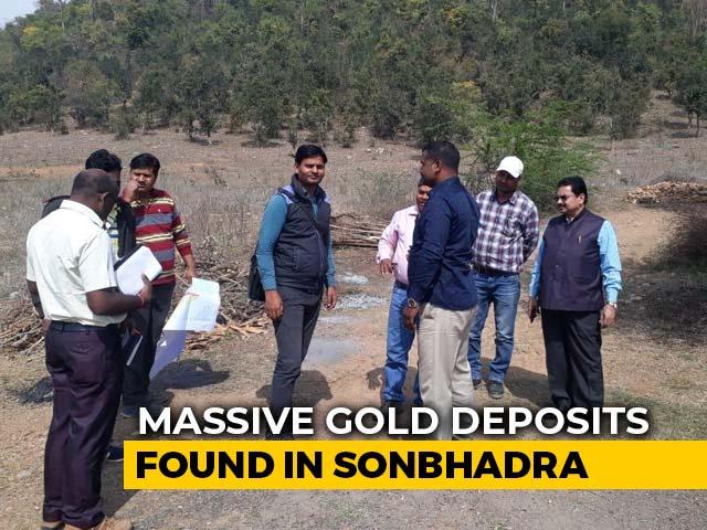 Video : Massive Gold Reserve Found In Uttar Pradesh's Sonbhadra