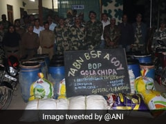 889 Kg Of Marijuana Seized, 4,500 Ganja Plants Destroyed By BSF In Tripura
