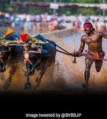 From Running With Buffalo To Turning Usain Bolt, The Srinivas Gowda Story