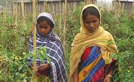 असम में विदेशी घोषित की गई महिला की दास्तान, जो बयां कर रही है कि क्या होगा NRC का असर
