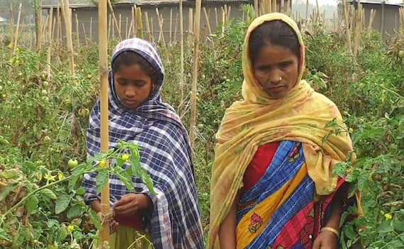 Declared Foreigner, Assam Woman's Story Predicts Citizenship List Effect