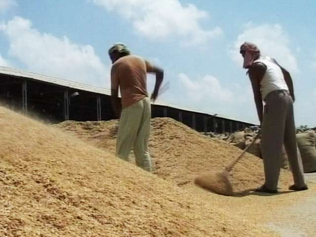 1.22 Crore Kisan Credit Cards Sanctioned Credit Limit Of Rs 102,065 Crore: Finance Ministry