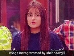 शहनाज गिल को इस कंटेस्टेंट ने दिया जबरदस्त शॉक, बोले- आप मुझे पसंद नहीं आईं...देखें Video