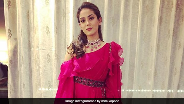 Mira Kapoor's Homemade <i>Desi</i> Feast Is Proof She's The Ultimate Cooking Champ!