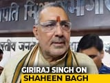 Video : Shaheen Bagh Now Suicide Bombers' Breeding Ground: Minister Giriraj Singh