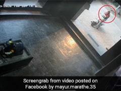 मंदिर के बाहर से ही हाथ जोड़कर निकल रही थी लड़की, फिर हुआ कुछ ऐसा, लोग बोले- 'VIP दर्शन...' देखें Video