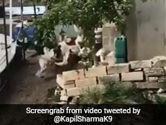 पुलिस का सायरन सुनकर मुर्गों ने लगा दी दौड़, कपिल शर्मा बोले- इनसे ही सीख लो कुछ...देखें Video
