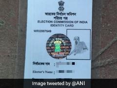 कुत्ते की फोटो लगाकर निर्वाचन आयोग ने जारी किया Voter ID कार्ड तो शख्स बोला- 'मेरी गरिमा के साथ खेला गया...'