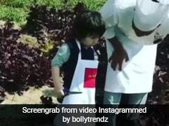 तैमूर अली खान के नए वीडियो पर प्यार लुटाती नजर आईं  दीपिका पादुकोण और आलिया भट्ट, देखें Video