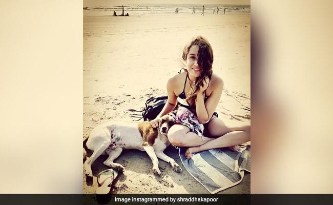 Shraddha Kapoor Has A Fun Time At The Beach. See Pic