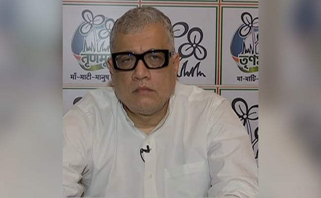 Trinamool 'Serious Contender' For BJP In Goa: Derek O'Brien On State Election