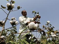How Coronavirus Is Undermining Crop Prices, Derailing Rural Rebound