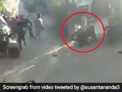 शेर ने मचाया गुजरात के गांव में आतंक, तेज रफ्तार में दौड़ते हुए आया तो लोगों ने किया ऐसा... देखें Video