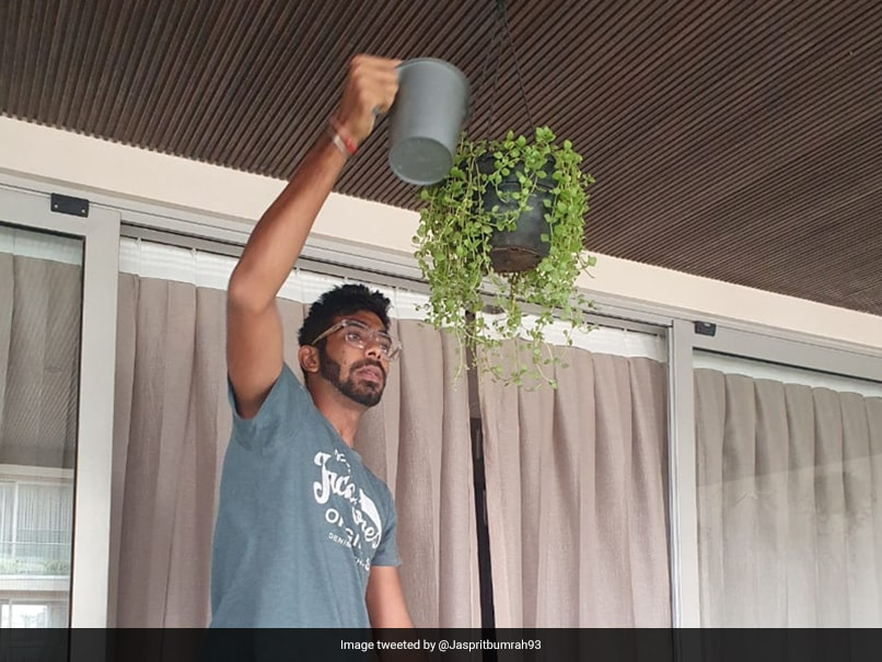 "Jasprit Bumrah Becomes ""Amateur Gardner"" Amid COVID-19 Pandemic. See Pictures"