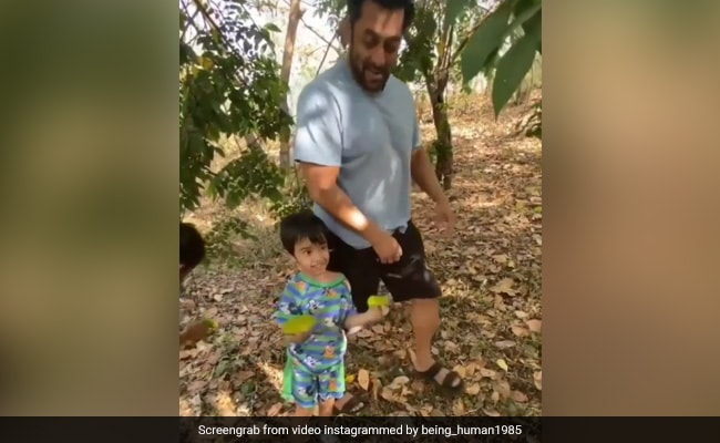 What's Keeping Salman Khan And His Nephew Ahil Busy These Days