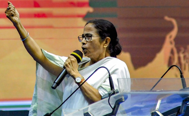 'Why Do You Fight All The Time?': Mamata Banerjee Publicly Scolds Party Men