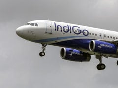 IndiGo To Raise Up To Rs 4,000 Crore Via Share Sale