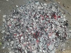 कोरोना वायरस पर प्रेस कांफ्रेंस में जलाए गए 'गोबर के उपले', कॉलेज स्टूडेंट्स बोले- 'हवा हो जाती है स्वच्छ...'