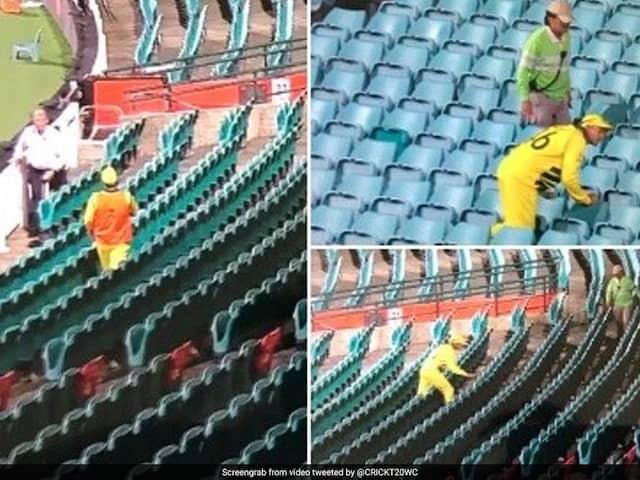 AUS Vs NZ 1st ODI This is happened when stadium is empty watch video