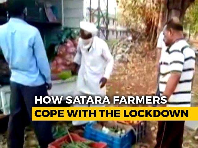 Video : In Lockdown, Satara Farmers' Revolutionary New Model