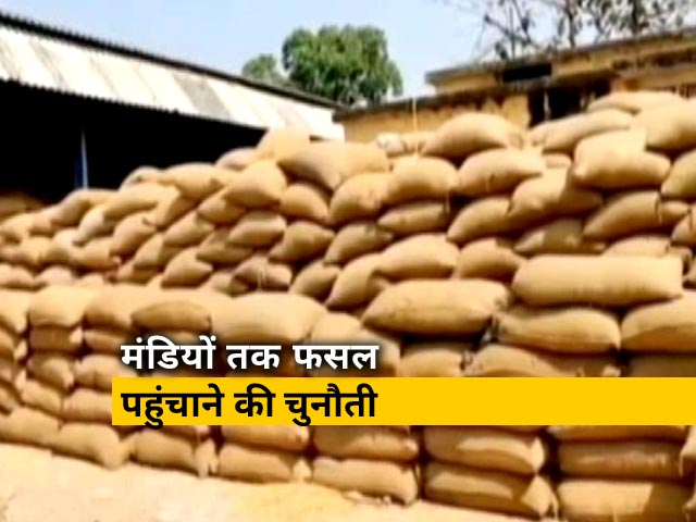 Videos : उत्तर प्रदेश में गेंहू की सरकारी खरीद शुरू,किसानों को अच्छी कीमत मिलने की चिंता