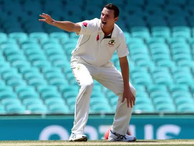 Coronavirus: Josh Hazlewood Says Teams Need To Have A Discussion On Use Of Saliva, Sweat To Shine Balls