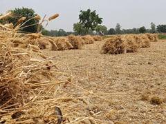 कृषि कानूनों पर प्रदर्शन के बीच केंद्र दो दिन पहले ही शुरू करेगा फसलों की सरकारी खरीद