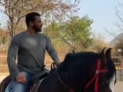 """Another Day At Salman Khan's Farmhouse. The Actor Is Busy """"Being Taken For A Ride"""""""