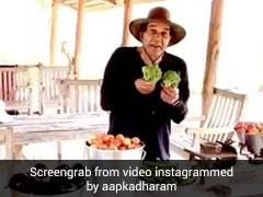 धर्मेंद्र के खेत में उगी ब्रोकली, बैंगन और टमाटर, तो तराजू लाकर लगे तौलने- देखें Video