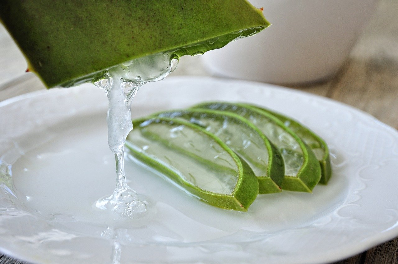 Aloe Vera Gel For Hair Care: Can We Apply Aloe Vera Gel On Hair?