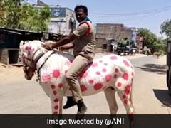 Andhra Pradesh Cop Uses His Horse To Spread Awareness About COVID-19