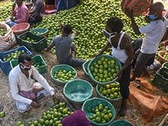 """Street Vendors Should Take """"Pro-Active Steps To Get Vaccinated"""": Delhi Court"""