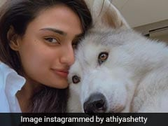 Celebs Spend Time With Pets During Lockdown, Delight Fans With Adorable Pics