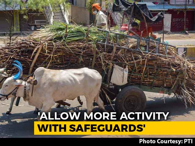"""Video : Allow More Activities With """"Reasonable Safeguards"""", Key Ministry Suggests"""