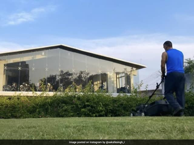 """MS Dhoni Spends """"Lawn Time"""" At Home Amidst Coronavirus Lockdown"""