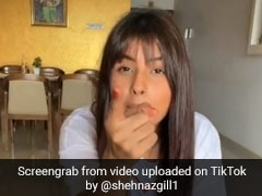शहनाज गिल ने कोरोनोवायरस को लेकर चाइना को दे डाली धमकी, बार-बार देखा जा रहा टिकटॉक Video